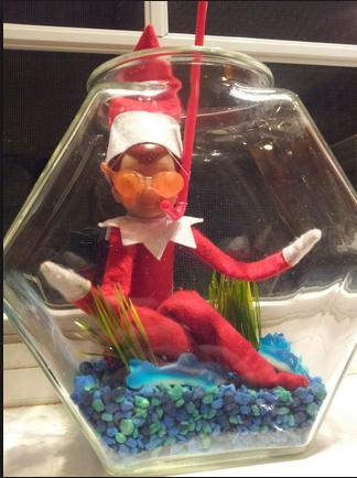Elf On The Shelf Ideas 30 Days Of Elfing Around Saving