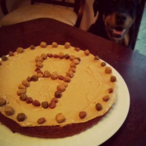 Awe Inspiring Dog Birthday Cake Recipe How To Make A Dog Cake The Easy Way Birthday Cards Printable Benkemecafe Filternl