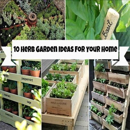 10 Herb Garden Ideas For Your Home Find An Herb Garden For Every Space