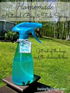 Homemade natural bug spray
