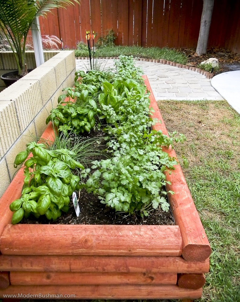 10 herb garden ideas for your home for Round flower bed ideas