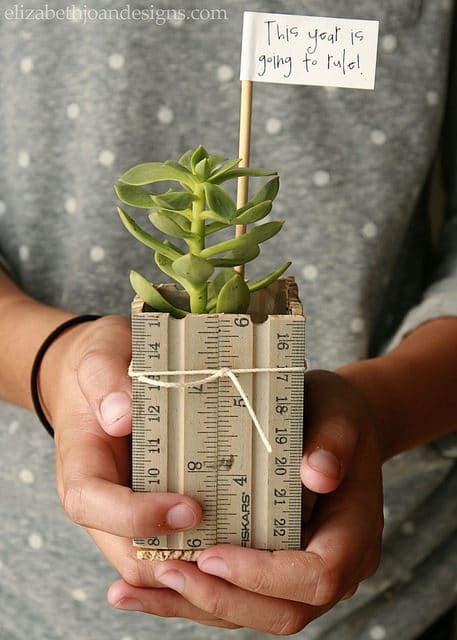 teacher gift - ruler succulent planter