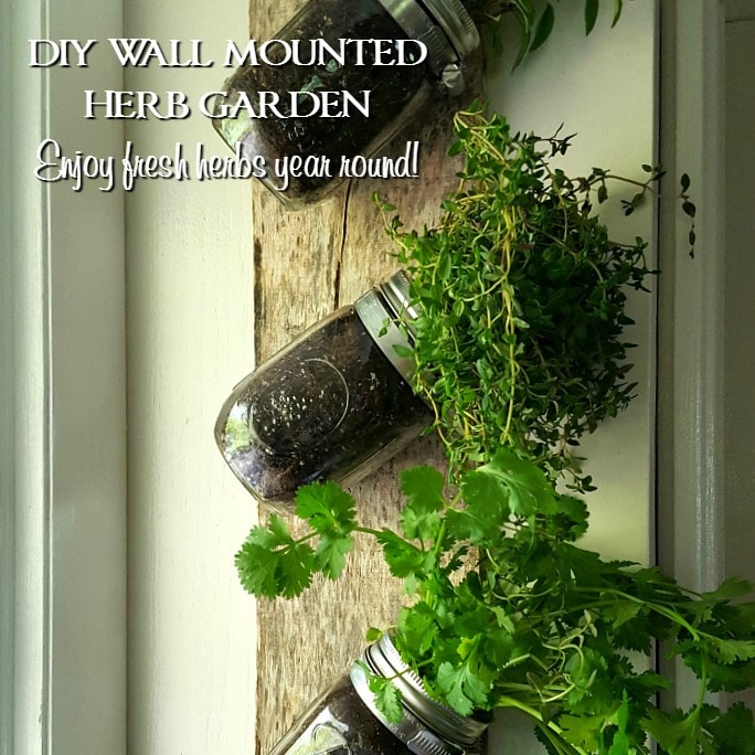 How To Make An Indoor Wall Herb Garden To Enjoy Fresh Herbs Year Round |  Saving By Design