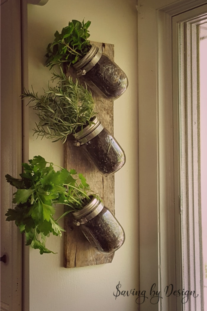 Mason Jar Wall Decor - herb garden