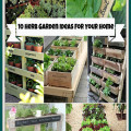 10 Herb Garden Ideas For Any Space